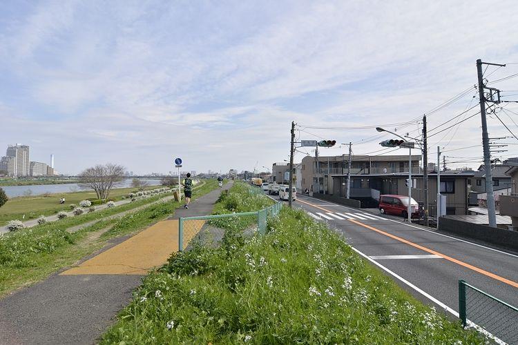 武蔵小杉駅の賃貸:【多摩川沿いを歩いて帰ろう。】
