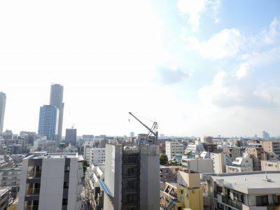武蔵小杉駅の賃貸:【開発すすむ武蔵小杉を独り占め。】